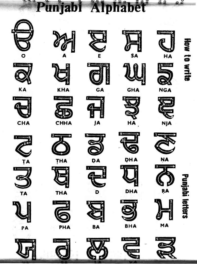 Punjabi Letters Alphabet
