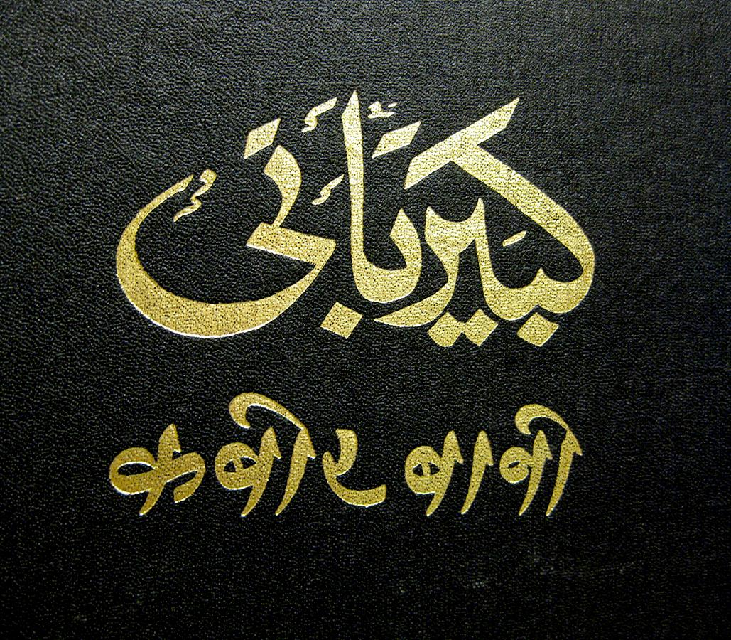 Hindi Urdu book Kabir Bani